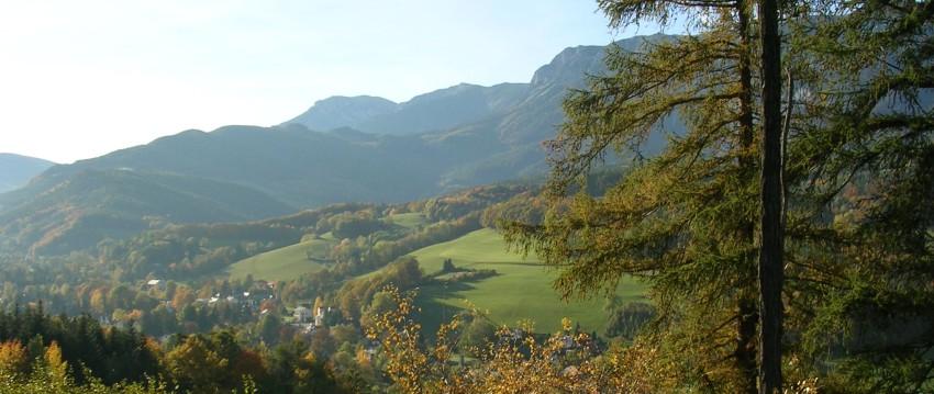 Reichenau Umgebung